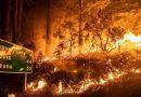 """بايدن يصف الحرائق في كاليفورنيا بـ""""الكارثة"""""""